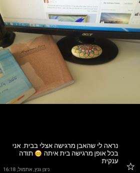 אבן לאוירה נעימה במשרד ולספיגת הקרינה מהמחשב