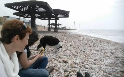 אבנים בים טיילת הכאמל